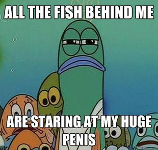 Serious fish SpongeBob