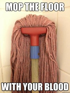Insanity Mop