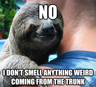 Suspiciously Evil Sloth