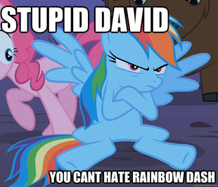 Rainbow dash grounded