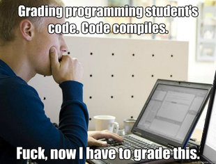 Programmer
