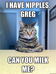 Chris Hansen Cat