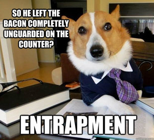 So he left the bacon unguarded on the counter?