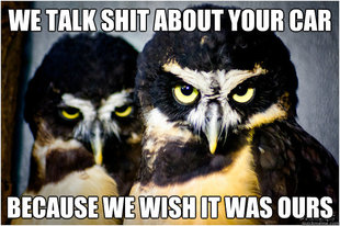 Honest Hater owls