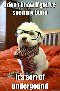 Hipster Dog