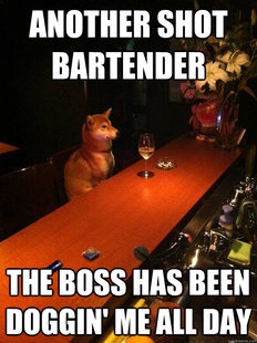 Alcoholic dog