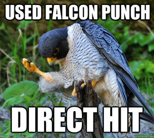 Success Falcon