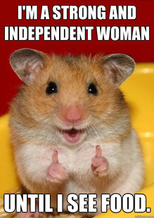 Rationalization Hamster