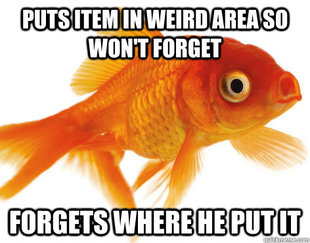 Forgetful Fish