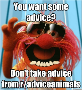 Advice Animal