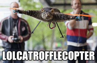 lolcatrofflecopter