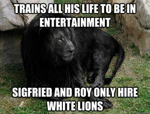 Black Lion Problems
