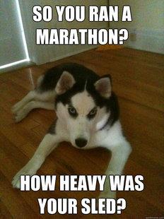 Husky Meme