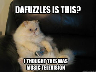 Disapproving TV Cat