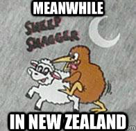 nz sheep shaggers