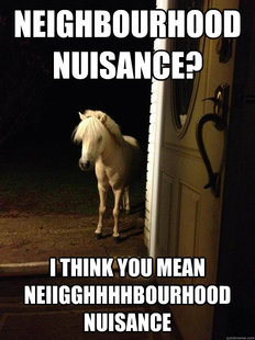 Neighborhood Nuisance