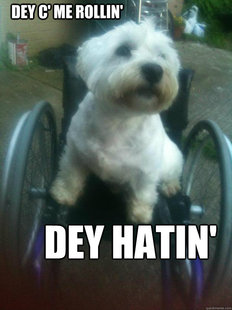 Dey C Me Rollin