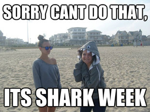 Shark week kelsey