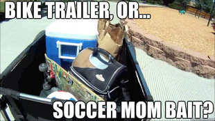 Soccer Mom Bait
