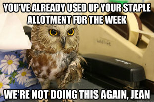 Omniscient Office Owl