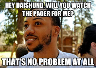 Good Guy Daishund