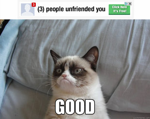 Grumpy Cat on Being Unfriended