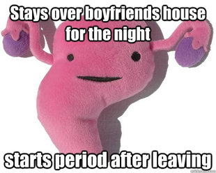 Good Guy Uterus