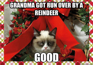 A Grumpy Cat Christmas