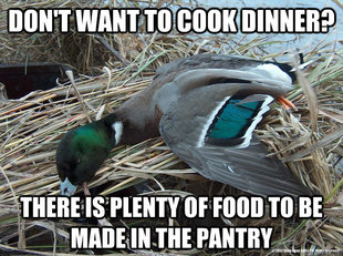 Worthless Advice Mallard