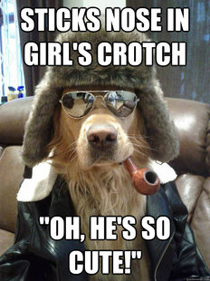 Overly Suave Dog
