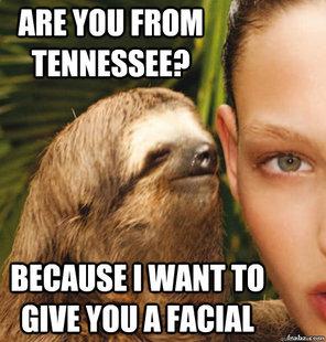 Rape sloth original - photo#39