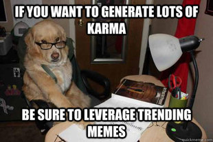 Financial Advice Dog