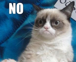 Grumpy Cat Memes No meme faces no cat Grumpy Cat