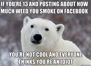 Popular Opinion Polar Bear