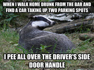 Bastard Badger