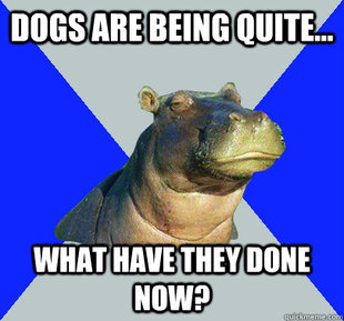 Skeptical Hippo