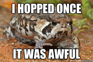 grumpy toad