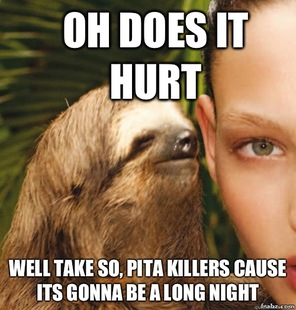 Rape sloth original - photo#34