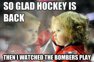 Die Hard Hockey Fan