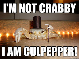 Fancy Crab