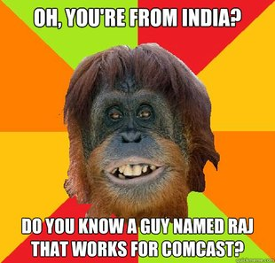 Culturally Oblivious Orangutan