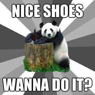 Pickup-Line Panda