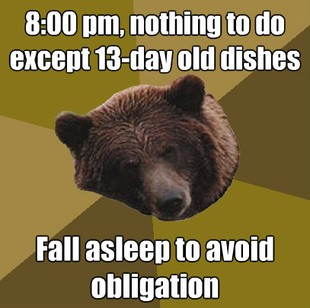 Lazy Bachelor Bear