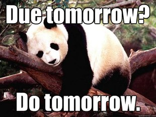 Procrastination Panda